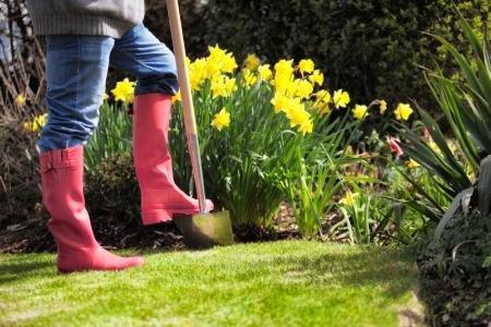 Red Boot garden